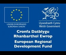 ERDF Welsh Government Icon