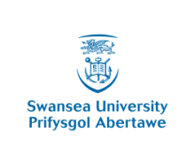 Swansea University Icon