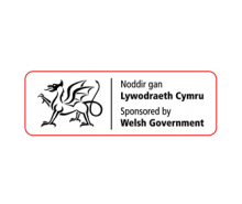 Welsh Government Icon
